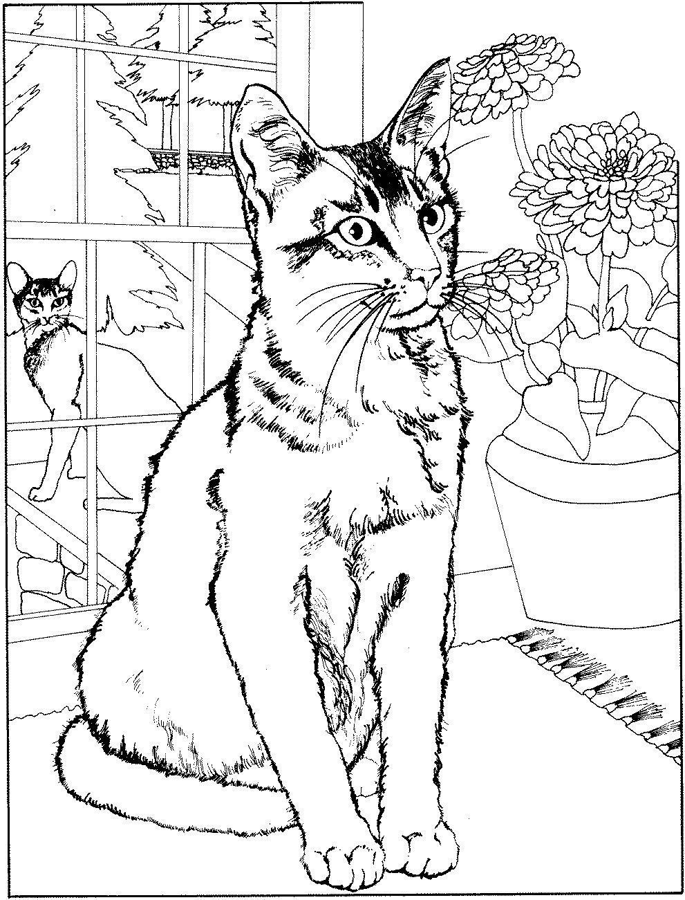 Coloriage chats page 2 - Chat a colorier adulte ...